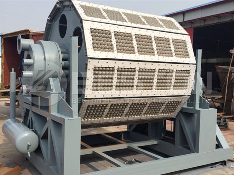 5000-6000pcs Egg Carton Machine For Sale