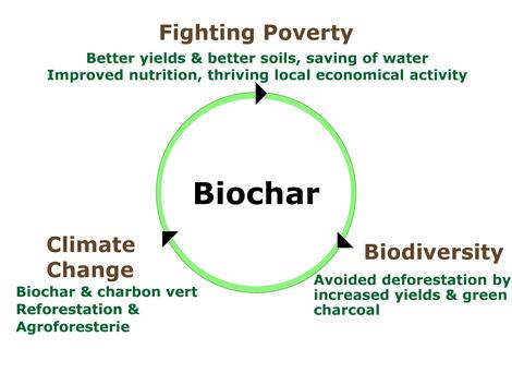 Beneficios de Biochar