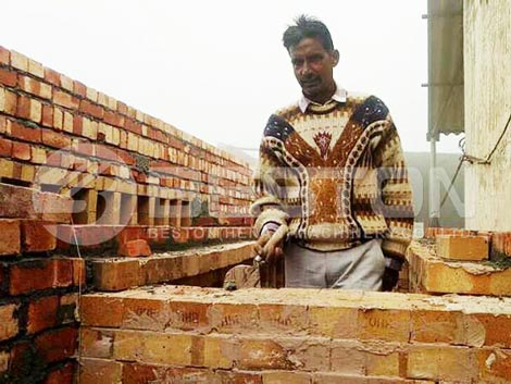 بناء خط تجفيف صينية البيض في الهند