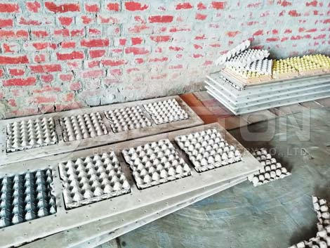 Egg Tray and Mould
