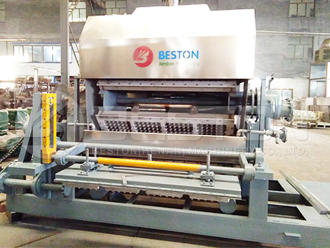 Egg Tray Machine To Hungary