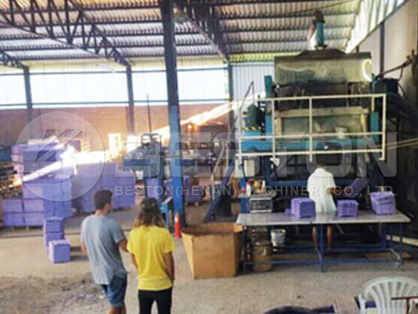 Instalación de una máquina de fabricación de bandejas de manzana en Brasil