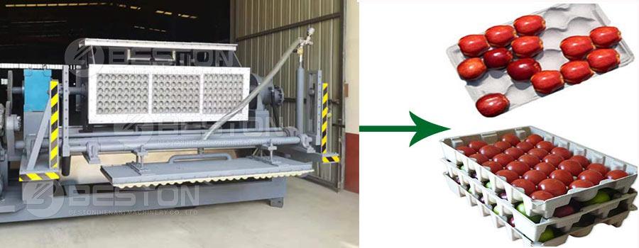 Apple Tray Making Machine