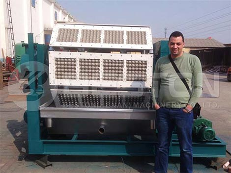 BTF-4-8 Egg Tray Machine For Sale