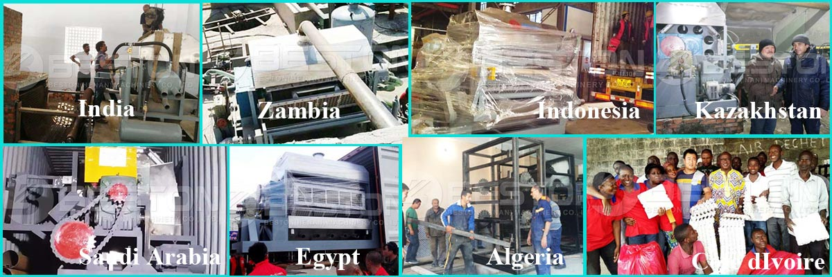 Cases Of Beston Egg Tray Machine
