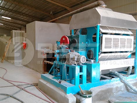 Egg Tray Machine for Sale in Saudi Arabia