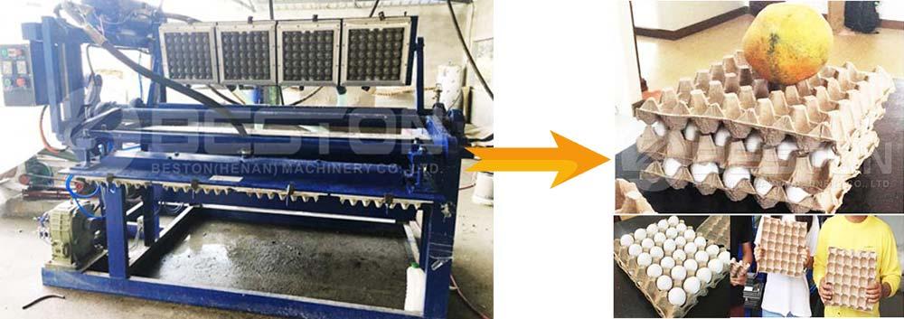 Máquina de fabricación de bandejas de huevos en Filipinas