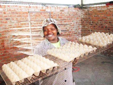 Plateaux d'oeufs d'un client africain