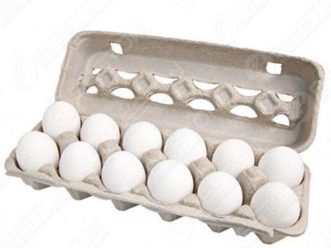 Cartone da 12 uova