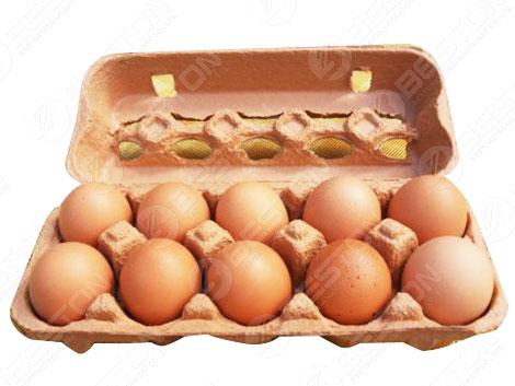Коробка с 10 яйцами