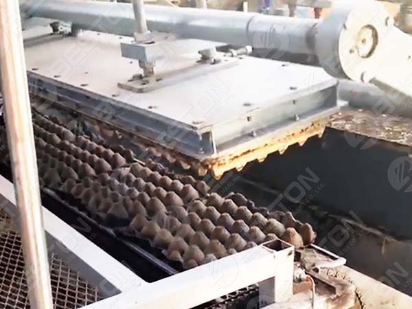1500pcs Egg Tray Machine in Mexico