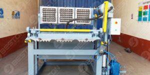 BTF1-3 1000PCS Egg Tray Machine