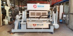 BTF3-4 2000pcs Egg Tray Machine