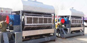 BTF5-8 5000-5500pcs Egg Tray Machine