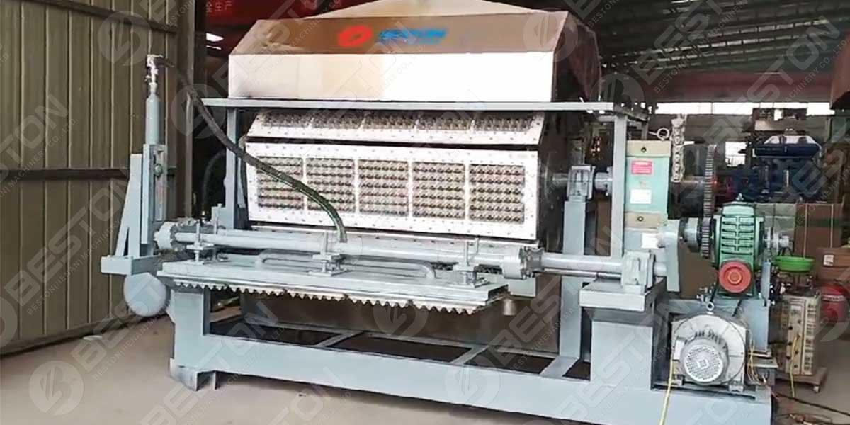 BTF5-8 Egg Tray Machine para a Índia