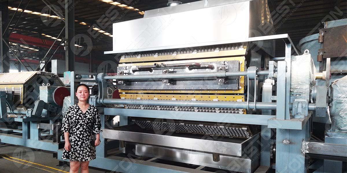 BTF6-8 6000-6500PCS Mesin Baki Telur