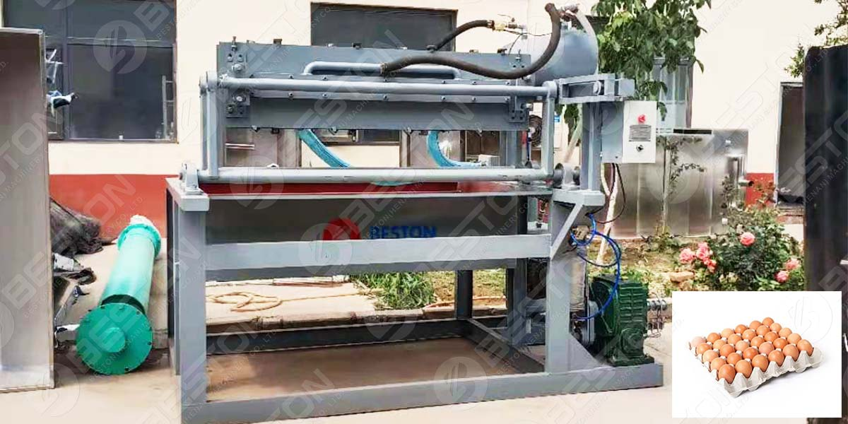 1500pcs Egg Tray Machine to Peru