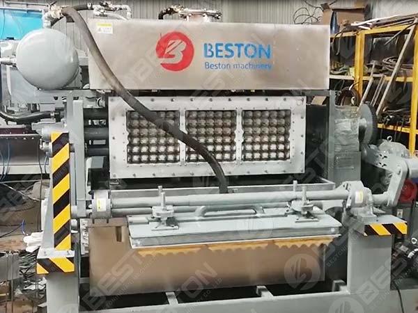 Машина для изготовления лотков для яиц BTF3-4 в Замбию