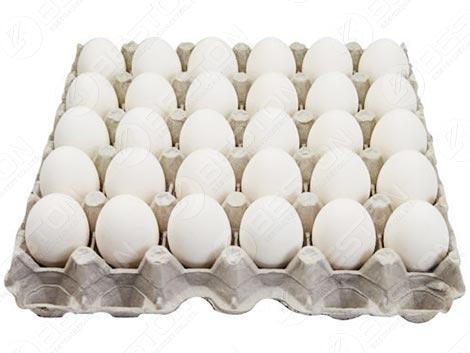 30 Paper Egg Crate